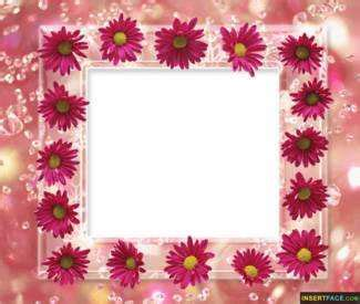 Attractive Pink Flowers Beautiful Photo Frame