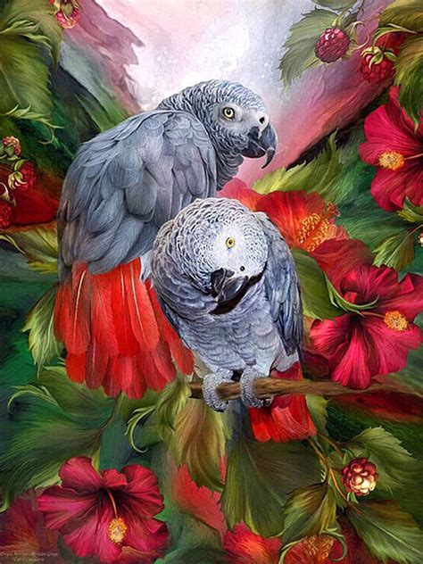 African Grey Parrots Full Drill – Paint With Diamonds